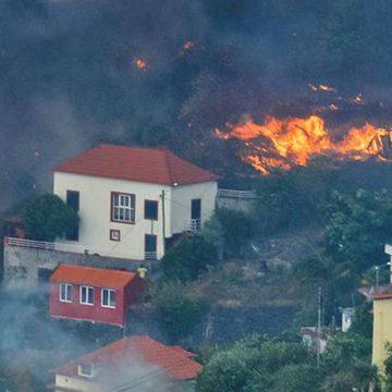 Rotary em Portugal lança campanha de angariação de fundos para ajudar as vítimas dos incêndios