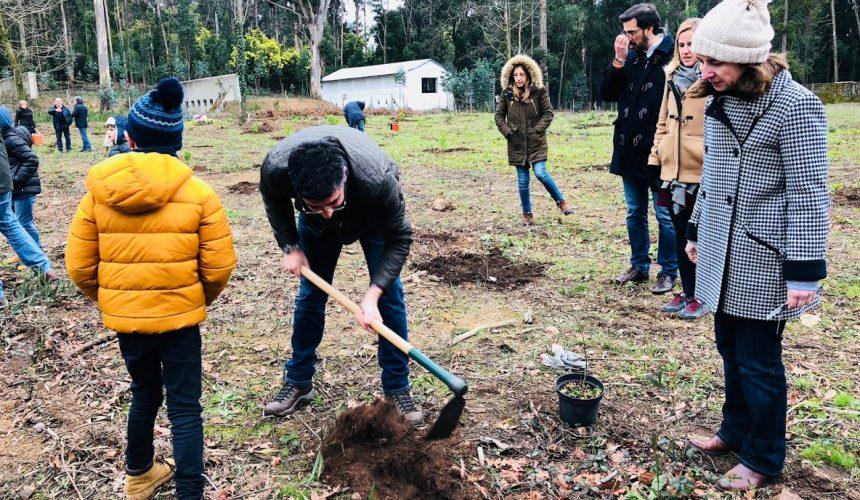 RC Viana do Castelo plantou 100 árvores na Serra de Santa Luzia